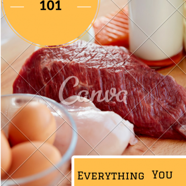 Protein 101:  Keeping it Simple